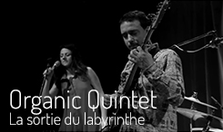 Organic Quintet